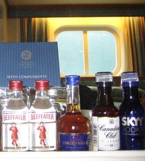 Cruies ship private bar attendant
